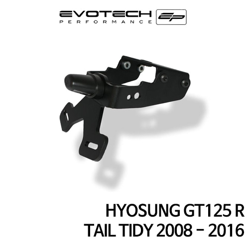 S&T GT125R 번호판휀다리스키트 2008-2016 에보텍