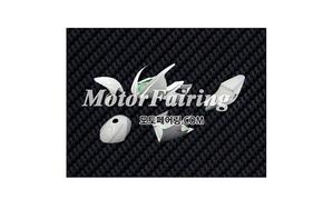 FRP카울 가와사키 ZX-6R 2000-2002 Fiberglass Fairing 368