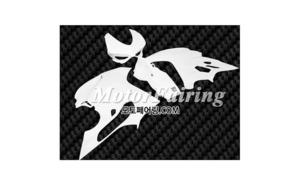FRP카울 두카티1199 2012-2013 Fiberglass Fairing 368