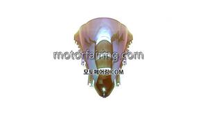 스크린/레이싱/이리듐/클리어/스모그/YZF1000 R1 07-08 Iridium Clear 20