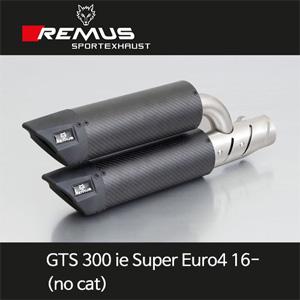 레무스 GTS300ie 슈퍼유로4 16- 베스파 슬립온 (no cat/no EC) 카본가드 듀얼쌍발 아크라포빅